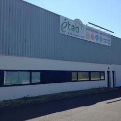 Location Local d'activités Noyal-Châtillon-sur-Seiche 290 m²