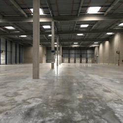 Location Entrepôt Le Plessis-Pâté 9559 m²