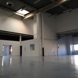 Location Local d'activités Gennevilliers 731 m²