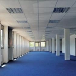 Location Bureau Gif-sur-Yvette 1589 m²