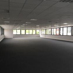 Location Bureau Isneauville 428 m²
