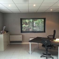 Location Local d'activités Sucy-en-Brie 365 m²