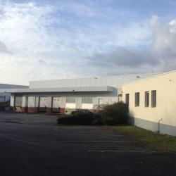 Location Local d'activités Orvault 4487 m²