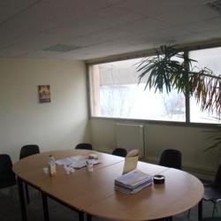 Vente Local d'activités Rumilly 3792 m²