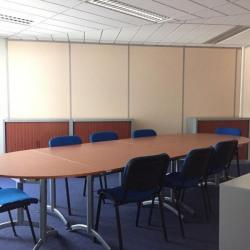 Location Bureau Noisy-le-Grand 325 m²