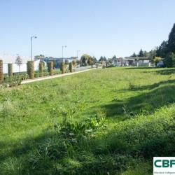 Vente Terrain Terrasson-Lavilledieu 3042 m²