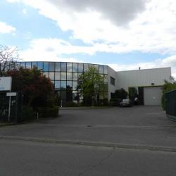 Location Bureau Savigny-sur-Orge 88 m²
