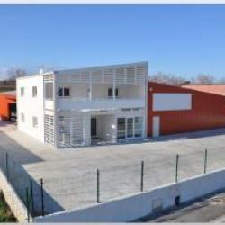 Location Local d'activités Paulhan 885 m²