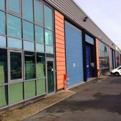 Location Local d'activités Alfortville 1996 m²