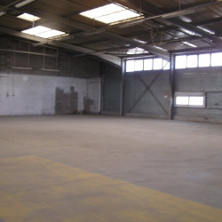 Location Local commercial Colomiers 800 m²