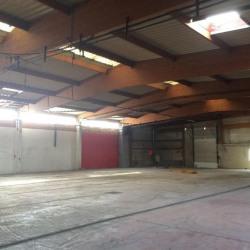 Location Local d'activités Villefranche-sur-Saône 800 m²