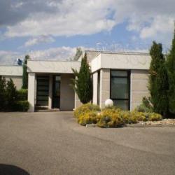 Location Local d'activités Ternay 470 m²