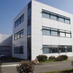 Location Bureau Décines-Charpieu 1169 m²