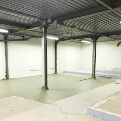 Vente Local d'activités Le Bourget 542 m²