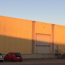 Vente Local d'activités Saint-Jean-de-la-Ruelle 1022 m²