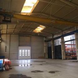 Location Local d'activités Bouxwiller 10000 m²