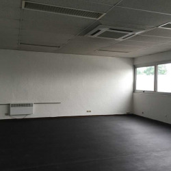 Location Local d'activités Chilly-Mazarin 1395 m²