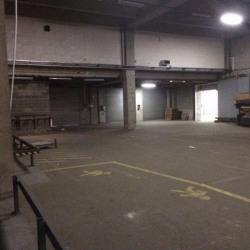 Location Local d'activités Pantin 1600 m²