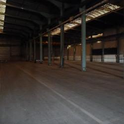 Location Entrepôt Torcy 250 m²