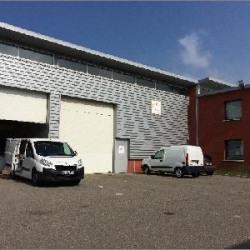 Location Local d'activités Brignais 305 m²