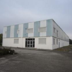 Vente Local d'activités Ensisheim 1252 m²