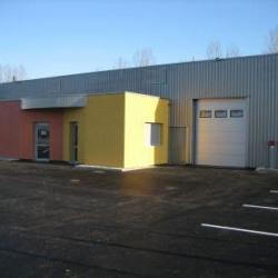 Location Local d'activités Genlis 606 m²