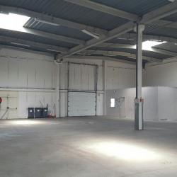 Location Entrepôt Valenton 584 m²