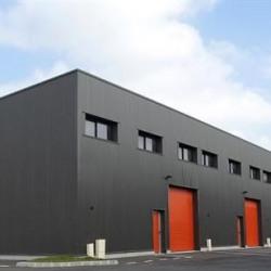 Location Local d'activités Vauchelles-les-Quesnoy 105 m²