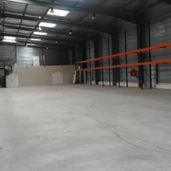 Location Local d'activités Lattes 1500 m²