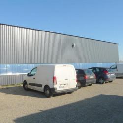 Location Local d'activités Saint-Jory 874 m²