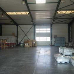 Location Local d'activités La Seyne-sur-Mer 644 m²