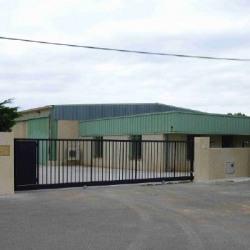 Vente Entrepôt Sainte-Tulle 750 m²