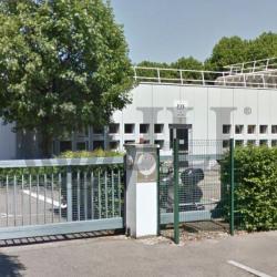 Location Bureau Lyon 7ème 296 m²