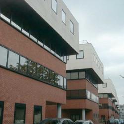 Location Bureau Le Pecq 505 m²
