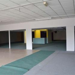 Vente Entrepôt Troyes 700 m²
