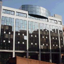 Location Bureau Toulouse 229 m²