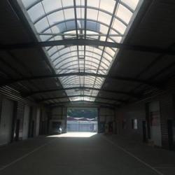 Vente Local d'activités Chaponost 240 m²