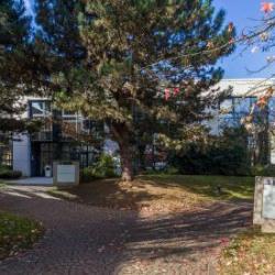 Location Bureau Guyancourt 208 m²