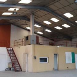 Vente Local d'activités Ramonville-Saint-Agne 720 m²
