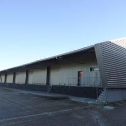 Location Local d'activités Corbas 981 m²