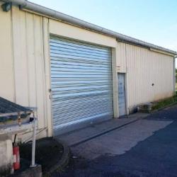 Vente Local d'activités Vaux-le-Pénil 960 m²