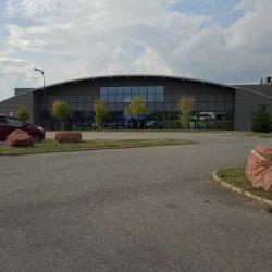 Vente Entrepôt Brumath 6431 m²