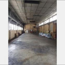Vente Local d'activités Bellignat 5000 m²