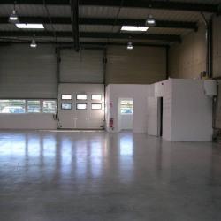 Location Local commercial Carbonne 250 m²