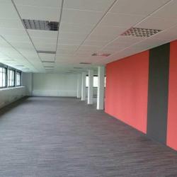 Vente Bureau Villeurbanne 1157,58 m²
