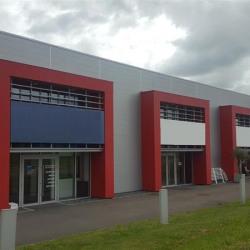 Location Local d'activités / Entrepôt Brécé