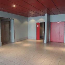 Location Bureau La Plaine Saint Denis 3029 m²