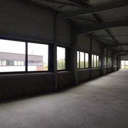 Location Entrepôt Sucy-en-Brie 584 m²