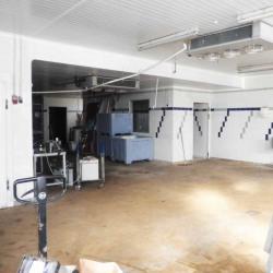 Location Local d'activités Rosny-sous-Bois 420 m²