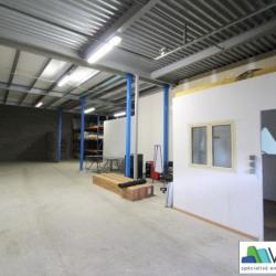 Vente Local d'activités Bailly-Romainvilliers 253 m²